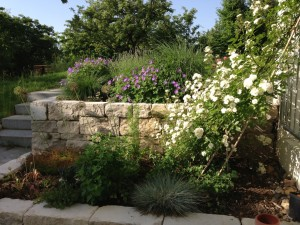 Blick in Garten-8